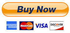LARGE PAYPAL BUY NOW BUTTON